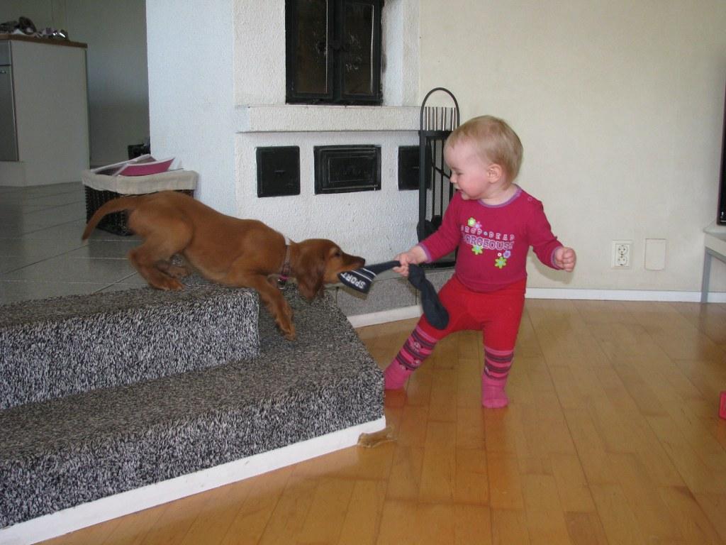 Elli ja Reko leikkii
